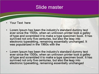 0000083152 PowerPoint Template - Slide 2