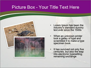 0000083152 PowerPoint Template - Slide 20