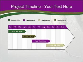 0000083152 PowerPoint Templates - Slide 25