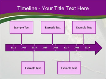 0000083152 PowerPoint Template - Slide 28