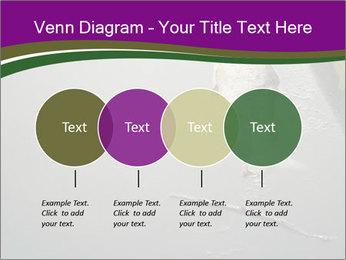 0000083152 PowerPoint Templates - Slide 32