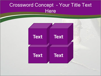 0000083152 PowerPoint Template - Slide 39