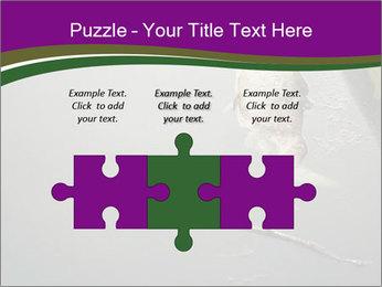0000083152 PowerPoint Templates - Slide 42