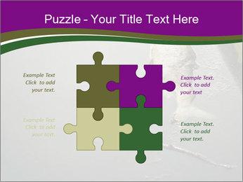0000083152 PowerPoint Templates - Slide 43