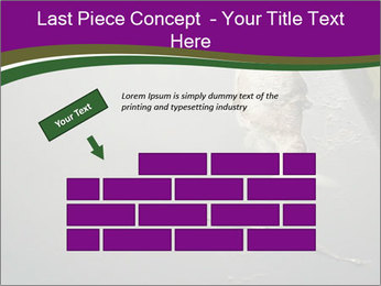 0000083152 PowerPoint Template - Slide 46