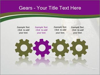 0000083152 PowerPoint Templates - Slide 48
