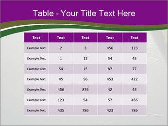 0000083152 PowerPoint Templates - Slide 55