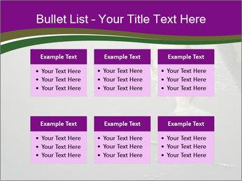 0000083152 PowerPoint Templates - Slide 56