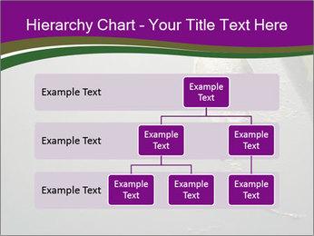 0000083152 PowerPoint Templates - Slide 67