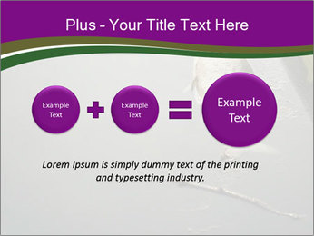 0000083152 PowerPoint Template - Slide 75
