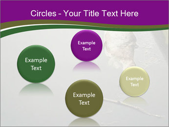 0000083152 PowerPoint Templates - Slide 77
