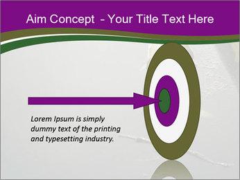 0000083152 PowerPoint Templates - Slide 83