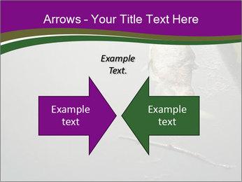 0000083152 PowerPoint Templates - Slide 90