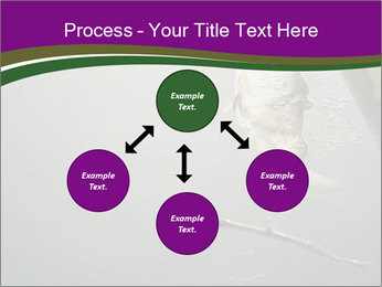 0000083152 PowerPoint Template - Slide 91