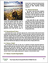0000083152 Word Template - Page 4