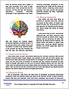 0000083155 Word Template - Page 4