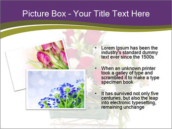 0000083157 PowerPoint Template - Slide 20