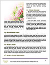 0000083157 Word Template - Page 4
