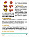 0000083162 Word Templates - Page 4