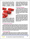 0000083165 Word Template - Page 4