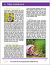 0000083167 Word Template - Page 3