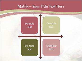 0000083174 PowerPoint Template - Slide 37