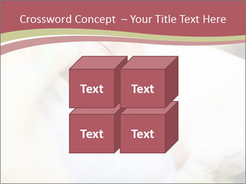 0000083174 PowerPoint Template - Slide 39