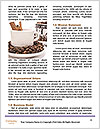 0000083177 Word Template - Page 4