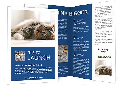 0000083178 Brochure Templates