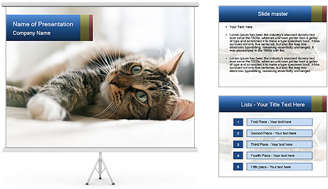 0000083178 PowerPoint Template