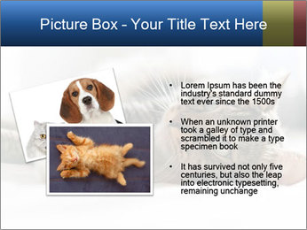 0000083178 PowerPoint Templates - Slide 20