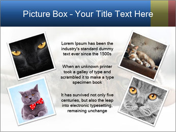 0000083178 PowerPoint Templates - Slide 24
