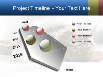 0000083178 PowerPoint Templates - Slide 26