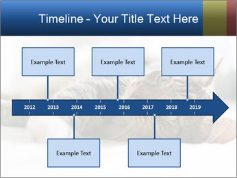 0000083178 PowerPoint Templates - Slide 28