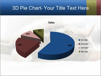 0000083178 PowerPoint Template - Slide 35