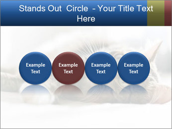 0000083178 PowerPoint Templates - Slide 76