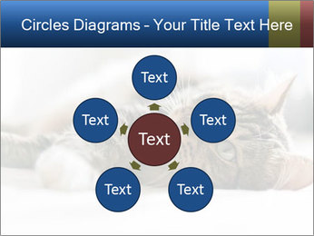 0000083178 PowerPoint Templates - Slide 78
