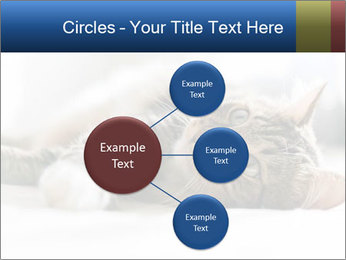 0000083178 PowerPoint Templates - Slide 79
