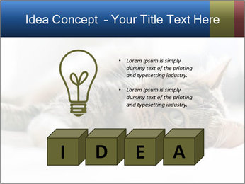 0000083178 PowerPoint Templates - Slide 80