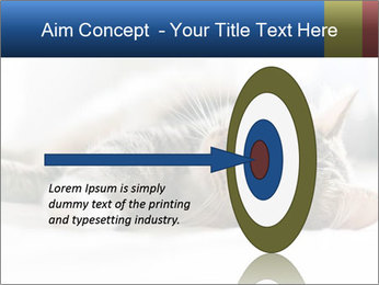 0000083178 PowerPoint Template - Slide 83