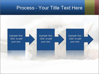 0000083178 PowerPoint Templates - Slide 88