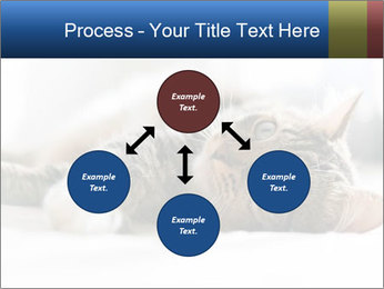 0000083178 PowerPoint Templates - Slide 91