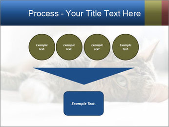 0000083178 PowerPoint Template - Slide 93
