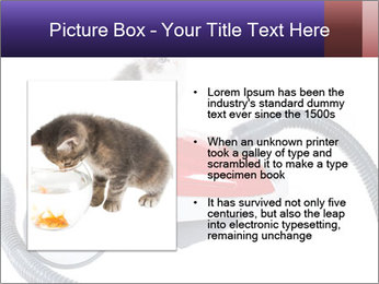 0000083180 PowerPoint Templates - Slide 13