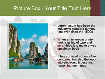 0000083181 PowerPoint Templates - Slide 13