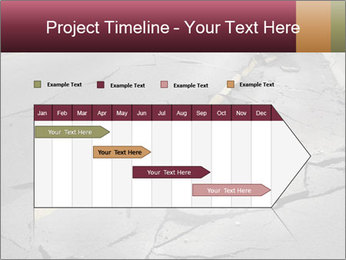 0000083183 PowerPoint Template - Slide 25