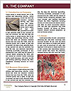 0000083183 Word Template - Page 3