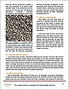 0000083183 Word Template - Page 4