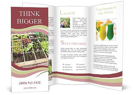 0000083187 Brochure Template