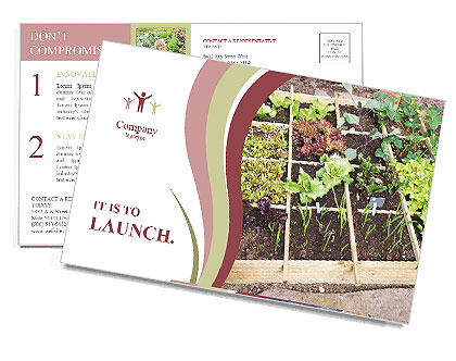 0000083187 Postcard Template